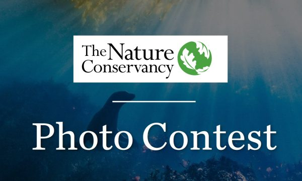 Nature Conservancy's Global Photo Contest