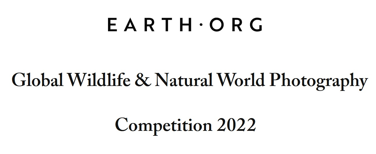 Earth.Org Photography Competition 2022 - logo