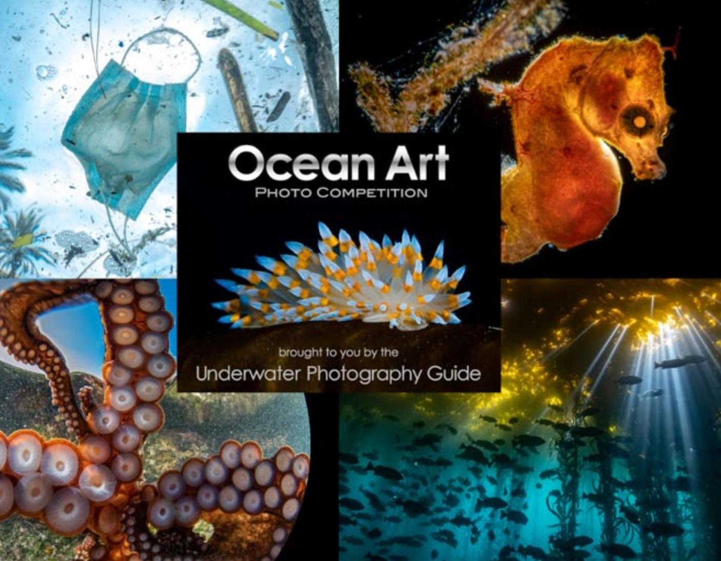 Ocean Art 2021 Underwater Photo Competition - logo
