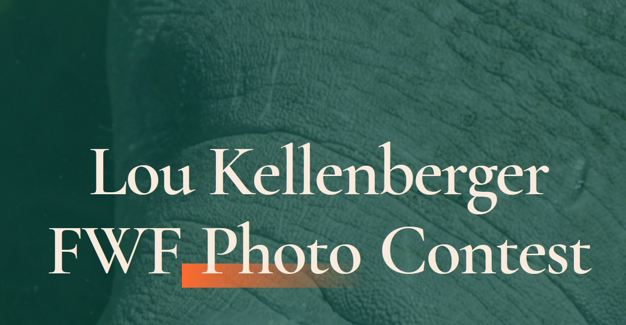 Lou Kellenberger FWF Photo Contest 2021 - logo