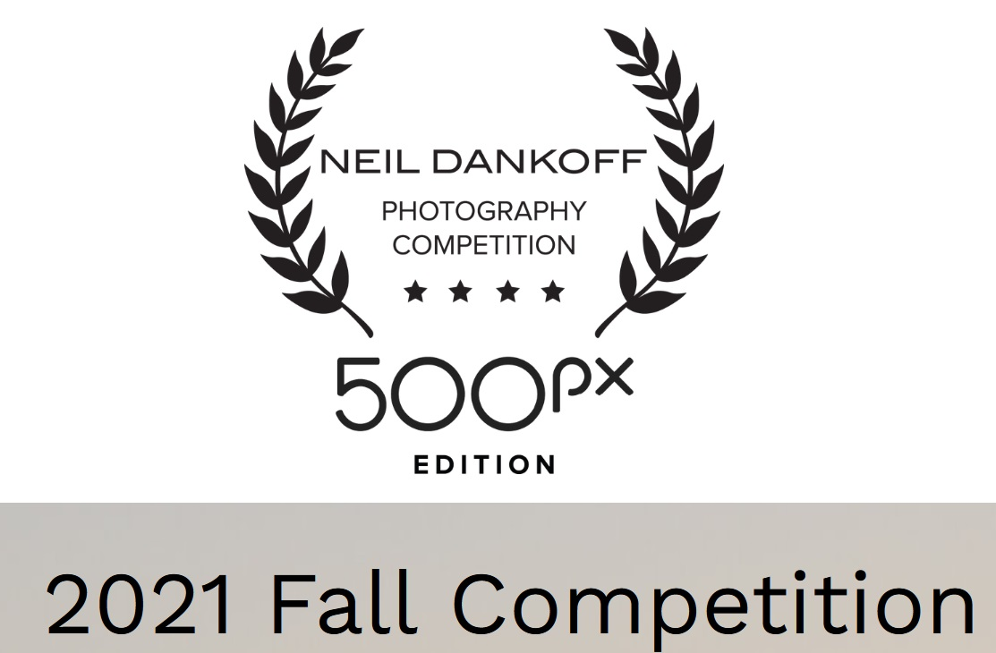 Neil Dankoff Photo Competition 500px Edition - logo
