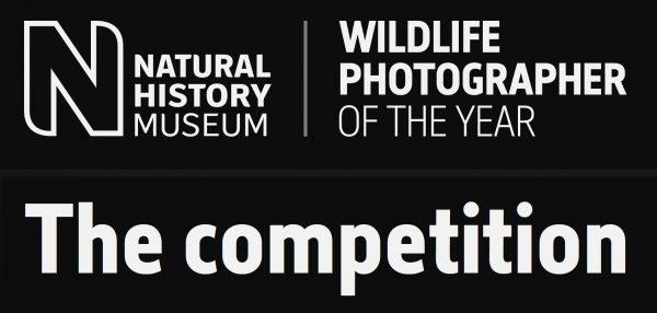 Wildlife Photographer of the Year 2022